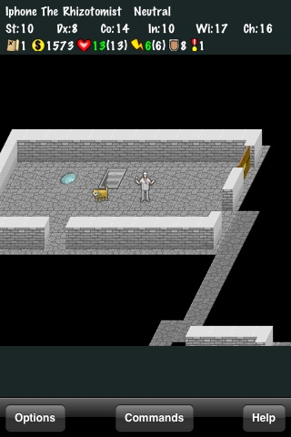 NetHack screenshot-0