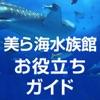 美ら海水族館お役立ち情報