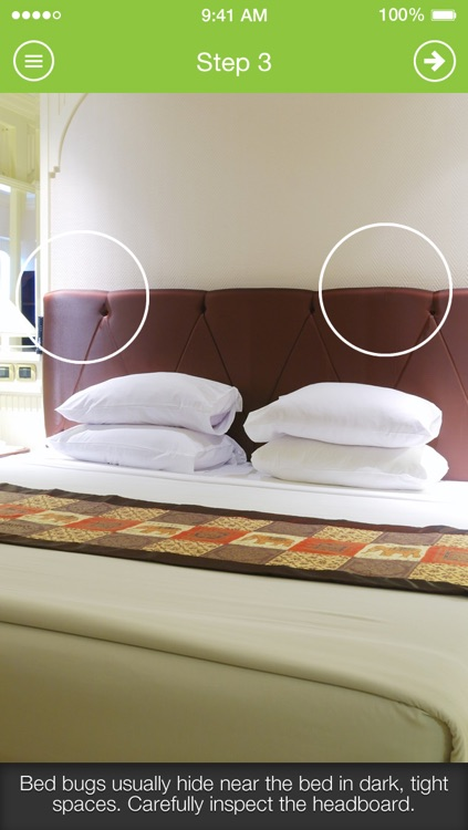 Bed Bug Proof