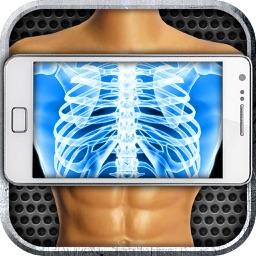 Simulator X-Ray Body
