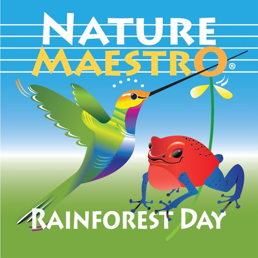 Nature Maestro Rainforest Day