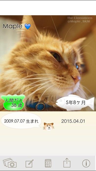 ニャンコいくつ?愛猫の年齢を計算して写真で保存!紹介画像3