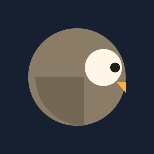 Owl Run: An Owlish Journey