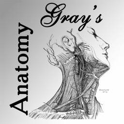Gray's Anatomy 2014