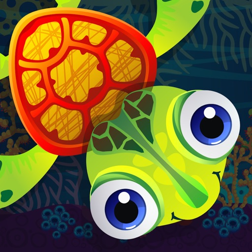 Turtle Jet Adventure icon