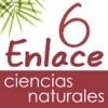 Vector Z | Enlace Ciencias Naturales 6