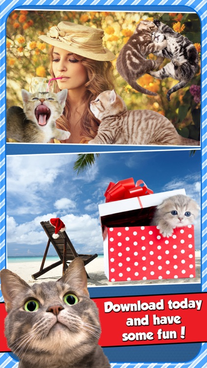 InstaKitty - A Funny Picture Editor with Cute Cats and Kitties Stickers screenshot-4
