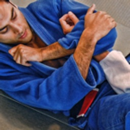 Brazilian Jiu Jitsu: Blue Belt Requirements