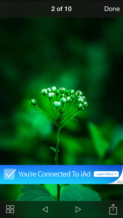 صور ملونة للواتس اب screenshot two