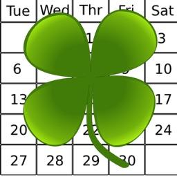 The Irish Week