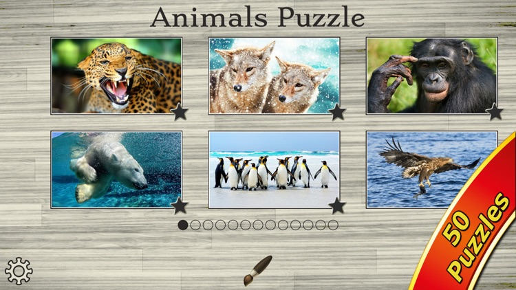 Amazing Wild Animals - Best Animal Picture Puzzle Games for kids screenshot-4