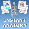 Instant Anatomy Flash Cards
