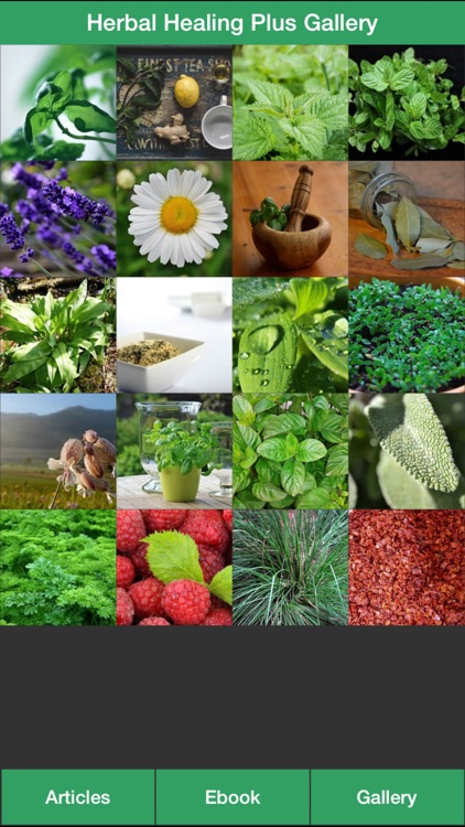 Herbal Healing Plus - A Guide To Treat Your Illnesses With Herbs!