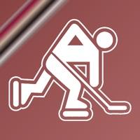 Codes for Name It! - Arizona Hockey Edition Hack
