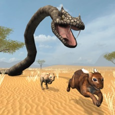 Activities of Snake Chase Sim