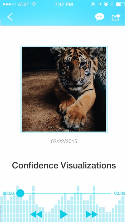 Ultimate Confidence Hypnosis and Guided Meditation Collection