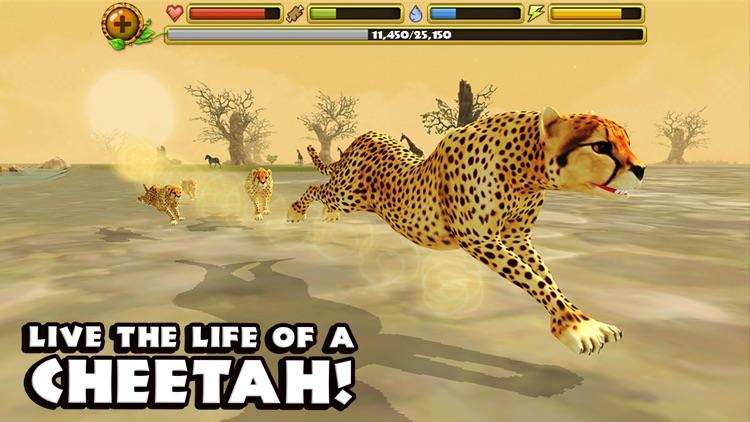 Cheetah Simulator screenshot-0