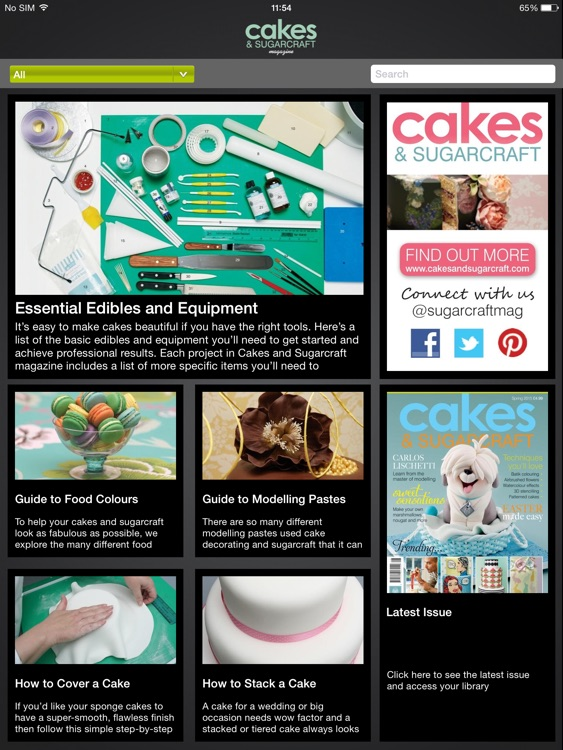 Cakes & Sugarcraft Magazine: all you need to bake and decorate your own cakes screenshot-2