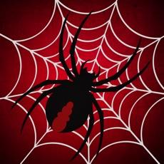 Activities of Amazing Sliding Spider Puzzle