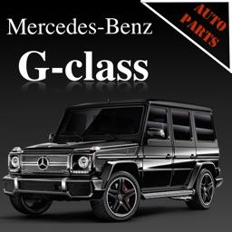 AutoParts  Mercedes-Benz G-class