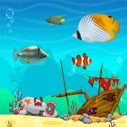 Fun Fish Eat Fish : Big Fish Simulator For Kids Games