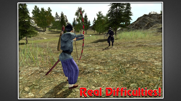 Samurai Warrior Assassin