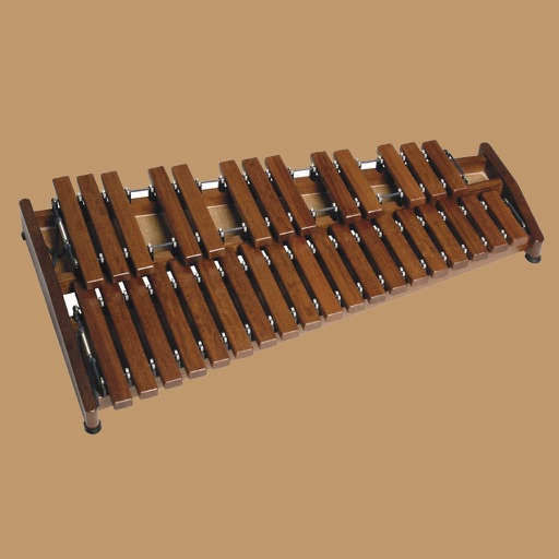 How To Play Xylophone