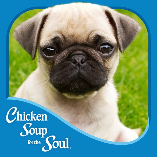 For the Love of Dogs from Chicken Soup for the Soul ® icon
