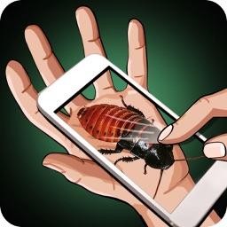 Cockroach Hand Joke