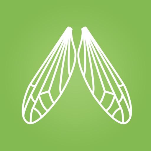 Easy Anti Mosquito iOS App