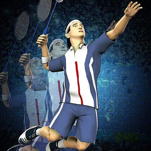 Super Badminton 2010 icon