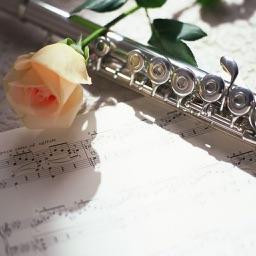 西洋乐器之长笛吹奏指法入门视频教程 - 初学者长笛训练课堂