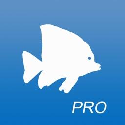 AquariaPro