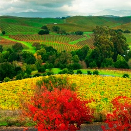 Bothe-Napa Valley State Park wallpapers