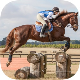 Learn How To Horse-Back Riding - Best Stallion Riding Experience Guide For Advanced & Beginners
