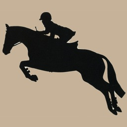 Horse Jumping Techniques