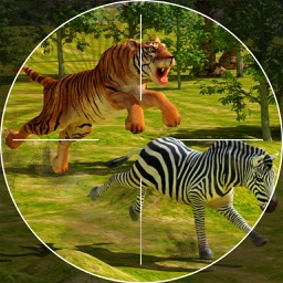 Safari Hunting – Sniper Shooting