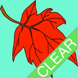 Leaf Adventure Clear