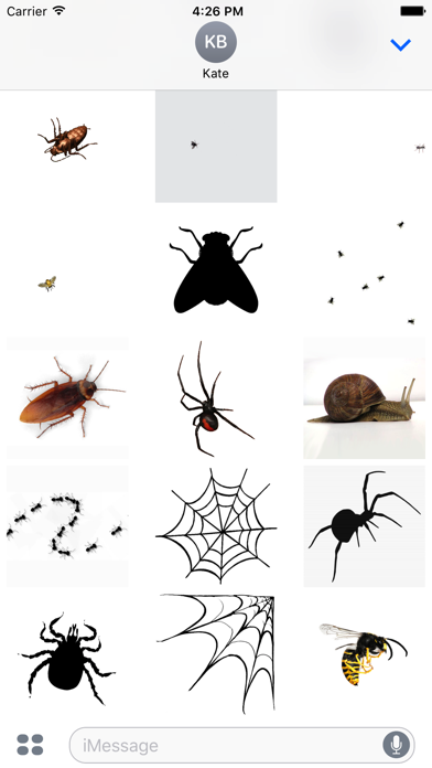 Animated Bugs screenshot two