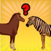 Animal kid: easy vocabulary spelling learning game