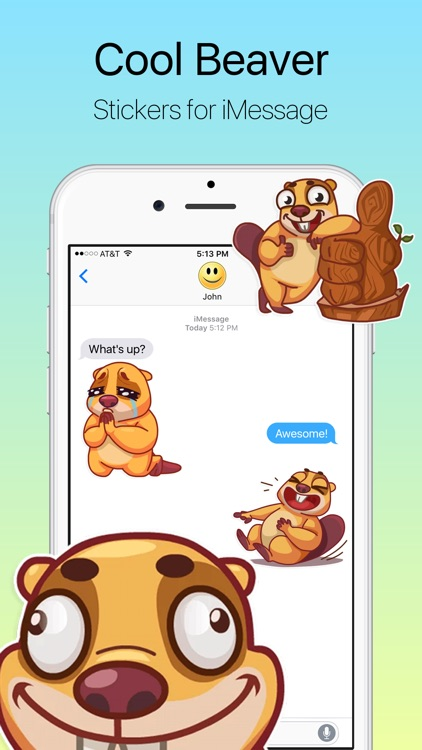 Cool Beaver Stickers