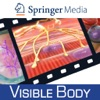 Physiology Animations for Springer