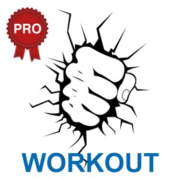 Martial Arts Workout Challenge PRO - Build Muscles