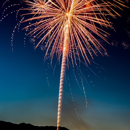 Animated Fireworks!