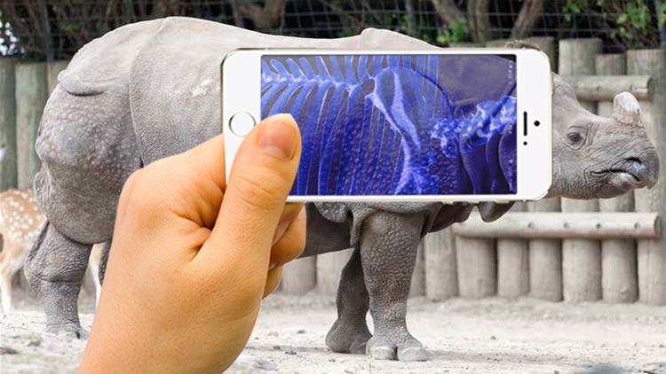 Xray Animal Scanner screenshot-4