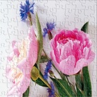 Flowers Jigsaw Puzzle For Kids 4 Year icon