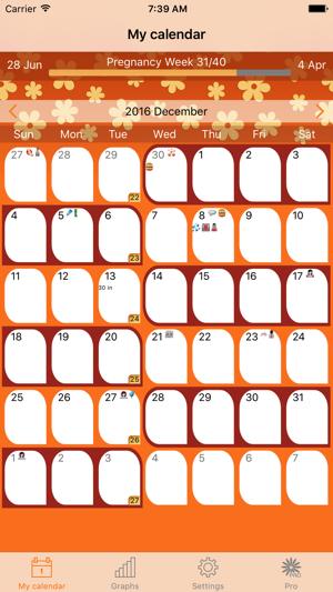pregnat calendar