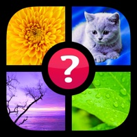 Guess the Word! ~ Photo Quiz with Pics and Words free Coins hack