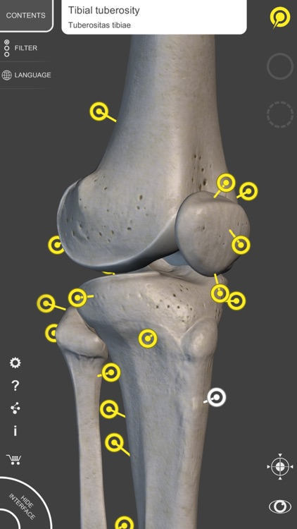 Skeleton 3D Anatomy screenshot-4