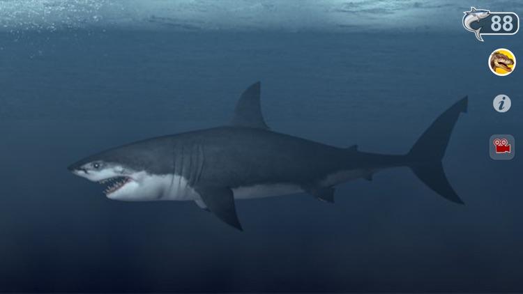 Talking Great White : My Pet Shark screenshot-3